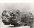 leone funerario